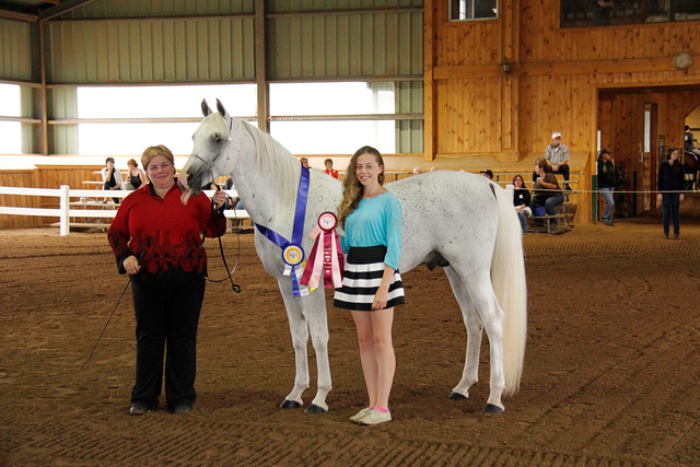 2014 Region 18 Res Champ Stallion